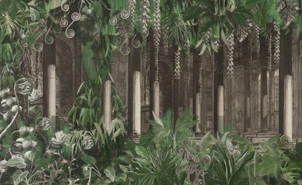 wallpaper amazonia 91 peeking nature (2)