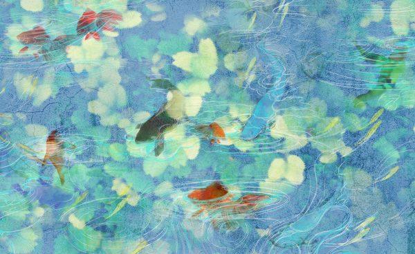 wallpaper koi 66 animal attitude (1)