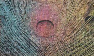 wallpaper les plumes 75 unconventional surfaces (2)