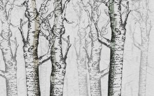 wallpaper norwegian wood 04 peeking nature (2)