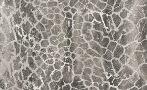 wallpaper savannah giraffe 744 suite collection (2)