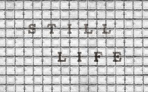 allpaper still life 13 unconvetnional surfaces (1)