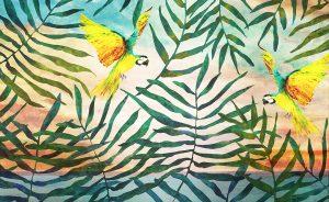 wallpaper tropical parrrots 59 animal attitude (1)